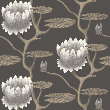 Cole & Son Summer Lily Black 95-4026