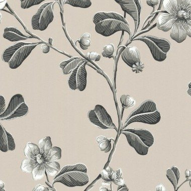 Little Greene Broadwick St Mono 0251BRMONOZ