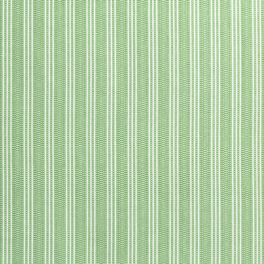 Anna French Reed Stripe Green AW9848