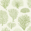Cole & Son Seafern Soft Green 107-2008 Thumbnail