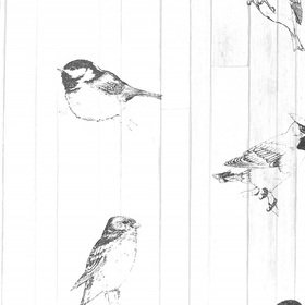 Brian Yates Pen Drawn Birds 143-128834