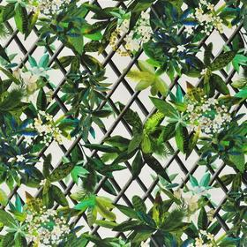 Christian Lacroix Canopy Malachite Fabric FCL2276-01