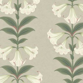 Cole & Son Angels Trumpet Chalk-Sage-Stone 117-3007