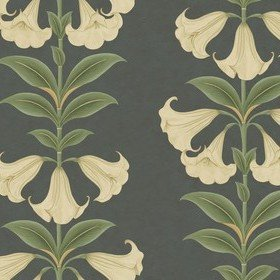 Cole & Son Angels Trumpet Cream-Olive-Charcoal 117-3006