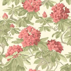 Cole & Son Bourlie Coral 99-4020