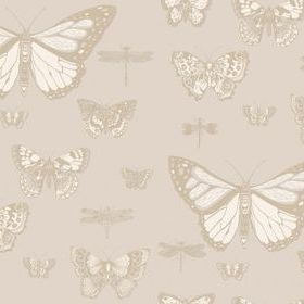 Cole & Son Butterflies & Dragonflies Grey 103-15064