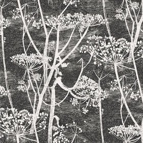 Cole & Son Cow Parsley Black-White 66-7046