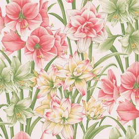 Cole & Son Exoticks Pink-Green 98-6023