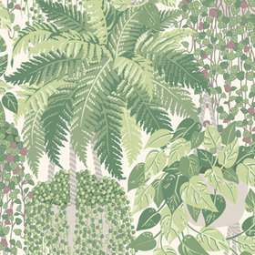 Cole & Son Fern Leaf Green-Olive 115-7021