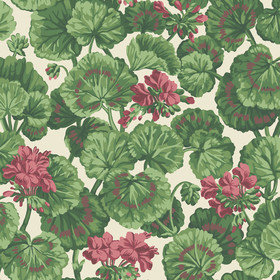 Cole & Son Geranium Rose-Forest Green-Parchment 117-11034