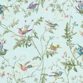 Cole & Son Hummingbirds Blue-Multi 100-14069