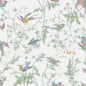 Cole & Son Hummingbirds Pastel 112-4016