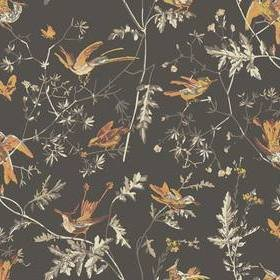 Cole & Son Hummingbirds Charcoal-Ginger 112-4017