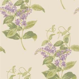 Cole & Son Madras Violet 100-12056