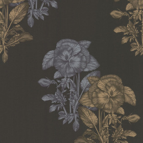 Cole & Son Pansee Black-Gold 77-2006