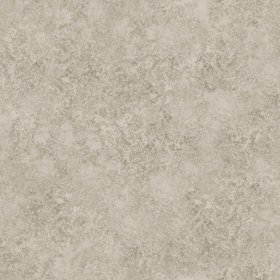 Cole & Son Patina Haze Warm Gilver 113-9026