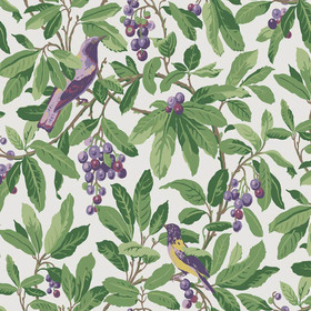 Cole & Son Royal Garden Purple-Green 98-1001