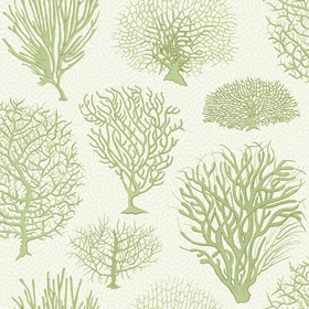 Cole & Son Seafern Soft Green 107-2008