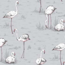 Cole & Son Flamingos 112-11040