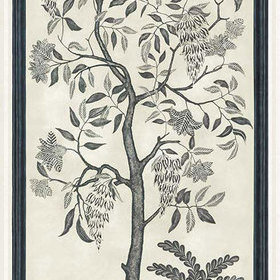 Cole & Son Trees Of Eden ETERNITY Charcoal-Parchment 113-14041