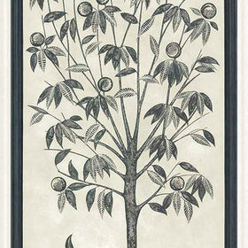 Cole & Son Trees Of Eden LIFE Charcoal-Parchment 113-14043