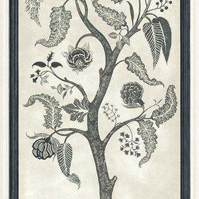 Cole & Son Trees Of Eden PARADISE Charcoal-Parchment 113-14042