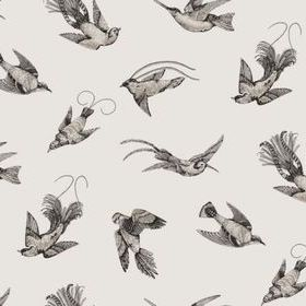 Cole & Son Tropical Birds Off White-Black 89-1001