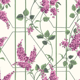Cole & Son Wisteria Magenta-Leaf Green-White 115-5013