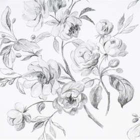 Designers Guild Watelet Black-White P540-01