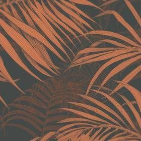 Fardis Maui Black-Orange 117074