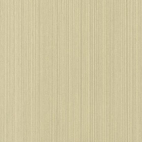 Farrow & Ball Dragged Papers DR1216
