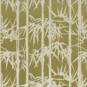 Farrow & Ball Bamboo BP2116