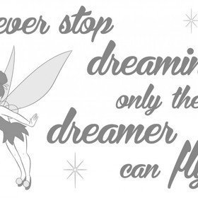 Fine Decor Disney Never Stop Dreaming Wall Sticker 14001H