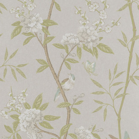 G.P & J Baker Peony & Blossom Ivory-Willow BW45066-4
