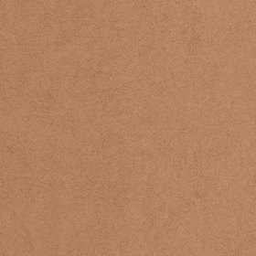 Graham & Brown Tranquil Copper 33-342