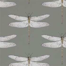 Harlequin Demoiselle Graphite-Almond 111242