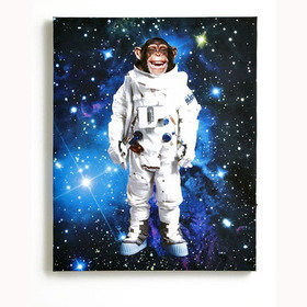 S.J. Dixon Space Monkey Light-Up-Canvas 004159