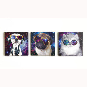 S.J. Dixon Space Animals Set Of 3 Canvas 004157