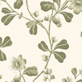 Little Greene Broadwick St Garden 0251BRGARDE