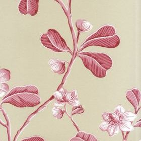 Little Greene Broadwick St Rosea 0277BRROSEA