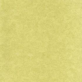 Little Greene Chesterfield Plain Courtyard 0273CPCOURT