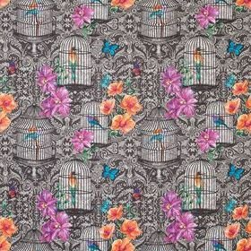 Matthew Williamson Orangery Black-Fuchsia-Orange-Cobalt F7122-01