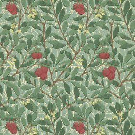 Morris & Co Arbutus Green-Red WR8466-1