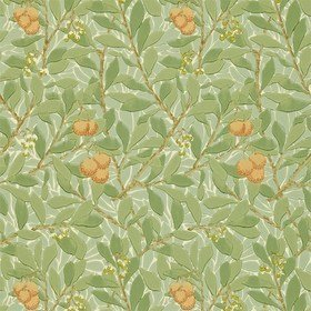 Morris & Co Arbutus Green-Terracotta 210408