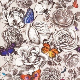 Osborne & Little Butterfly Garden Original Multi W6592-01