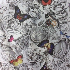 Osborne & Little Butterfly Garden Original on Foil W6592-02