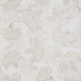 Osborne & Little Sycamore Stone-Pale Gold W7336-04