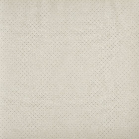 Prestigious Textiles Oxford Canvas 3755-142