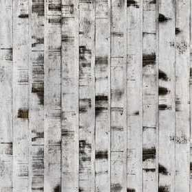 Rebel Walls Metal Birch R15221
