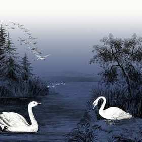 Rebel Walls Swan Lake Nightfall R16222